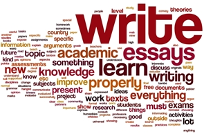 Essay On Paper  Diwali Essay In English also Conscience Essay Best Custom Writing Service Health And Fitness Essay
