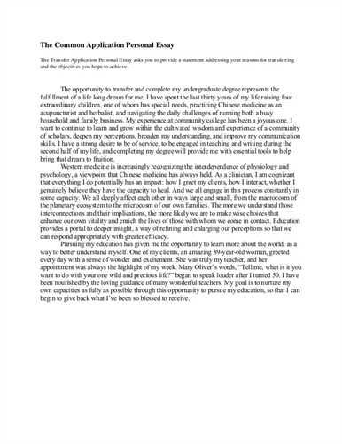 A character analysis essay
